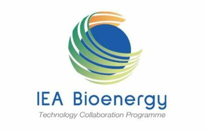 IEA Bioenergy Annual Report 2019